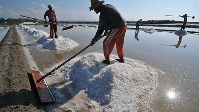 Demi Tingkatkan Produksi, Industri Garam Indonesia Dituntut Gunakan Teknologi