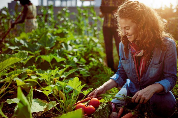 Manfaat Berkebun untuk Kesehatan Jiwa dan Raga