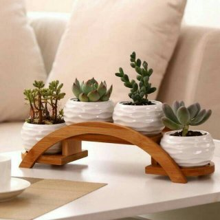 Rak Pot Bunga Minimalis Paling Cocok untuk Halaman Rumah